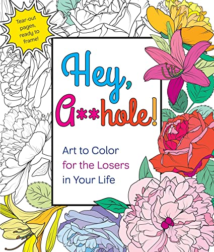 hey-ahole-art-to-color-for-the-losers-in-your-life