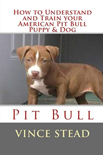 how-to-understand-and-train-your-american-pit-bull-puppy-dog