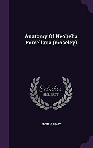 anatomy-of-neohelia-porcellana-moseley