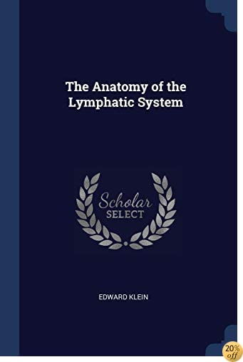 The Anatomy of the Lymphatic System