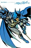 O'Neil, Dennis: Batman Illustrated