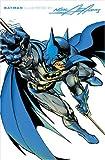 O'Neil, Dennis: Batman Illustrated - Volume 2 (Batman (DC Comics Hardcover))