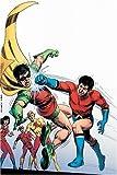Haney, Bob: Showcase Presents: Teen Titans, Vol. 2