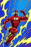 Millar, Mark: The Flash: Emergency Stop