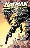 Morrison, Grant: Batman Under The Cowl TP