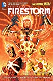 Van Sciver, Ethan: The Fury of Firestorm: The Nuclear Men Vol. 1: God Particle (The New 52)