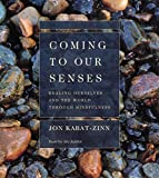 Kabat-Zinn, Jon: Coming to Our Senses: Healing Ourselves and the World Through Mindfulness