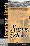 Jonathan Harris: Seizing Amber