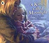 Waddell, Martin: A Kitten Called Moonlight