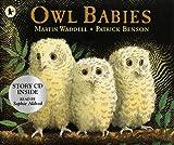 Waddell, Martin: Owl Babies