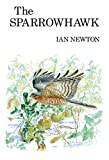 Newton, Ian: The Sparrowhawk (Poyser Monographs)