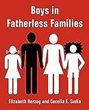 Herzog, Elizabeth: Boys in Fatherless Families