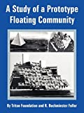 Triton Foundation: Study of a Prototype Floating Community, A