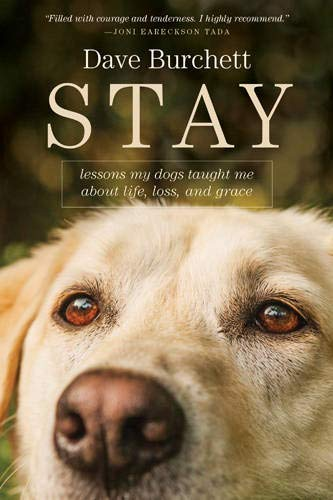 stay-lessons-my-dogs-taught-me-about-life-loss-and-grace