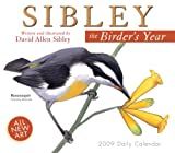 David Allen Sibley: Sibley: The Birder's Year 2009 Daily Boxed Calendar (Calendar)