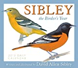 David Allen Sibley: Sibley: The Birder's Year 2013 Box/Daily (calendar)