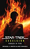 Martin, Michael A.: Forged in Fire (Star Trek: Excelsior)
