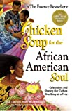 Canfield, Jack: Chicken Soup for the African American Soul