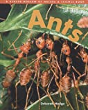 Hodge, Deborah: Ants (Denver Museum Insect Books) (Turtleback School & Library Binding Edition) (Denver Museum of Nature & Science Books (Prebound))