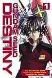 Iwase, Masatsugu: Gundam Seed Destiny