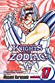 Acheter Knights of the Zodiac volume 17 sur Amazon