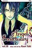 Yuki, Kaori: Angel Sanctuary, Vol. 18