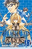 Yabuki, Kentaro: Black Cat 18