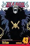 Acheter Bleach volume 43 sur Amazon