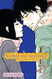 Acheter Kimi ni Todoke, From me to you volume 17 sur Amazon