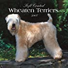 Soft Coated Wheaten Terriers 2007 Calendar…