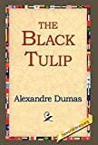 Dumas, Alexandre: The Black Tulip