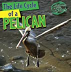 The Life Cycle of a Pelican (Nature's Life…