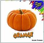 Orange (My Colorful World) by Nicole…