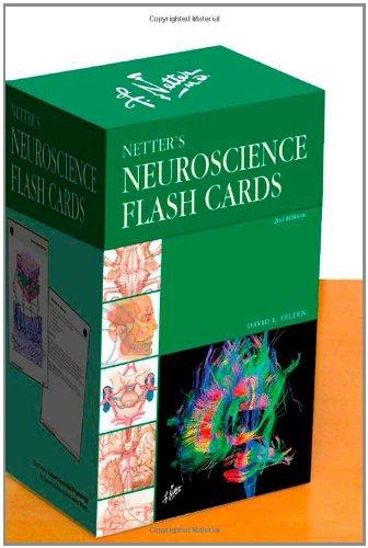 netters-neuroscience-flash-cards-2e-netter-basic-science
