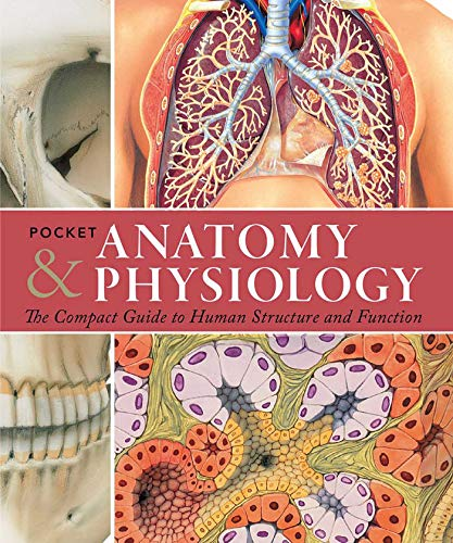 pocket-anatomy-physiology-the-compact-guide-to-the-human-body-and-how-it-works