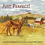 Donovan, Jane: Just Perfect!