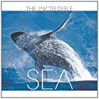The incredible sea by Gaetano Cafiero