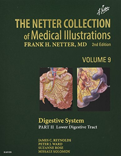 the-netter-collection-of-medical-illustrations-digestive-system-part-ii-lower-digestive-tract-2e-netter-green-book-collection