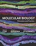 Cox, Michael: Molecular Biology: Principles and Practice & eBook Access Card (12 Month)