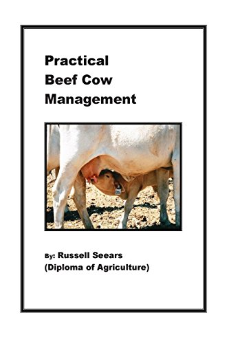 practical-beef-cow-management