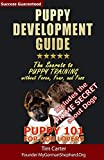 Carter, Tim: Puppy Development Guide - Puppy 101 for Dog Lovers: The Secrets to Puppy Training without Force, Fear, and Fuss (New Dog Series) (Volume 4)