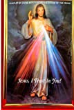 Nancy: Chaplet Of Divine Mercy- Novena & Stations Of The Cross_1_1