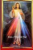 Nancy: Chaplet Of Divine Mercy- Novena & Stations Of The Cross_6_9PB