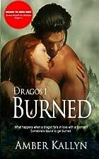 Burned [with bonus Christmas short story…