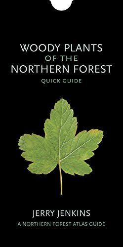 woody-plants-of-the-northern-forest-quick-guide-the-northern-forest-atlas-guides