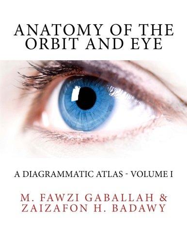 anatomy-of-the-orbit-and-eye-a-diagrammatic-atlas-volume-i-volume-1