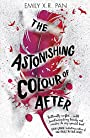 The Astonishing Colour of After - Emily X. R. Pan
