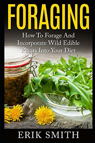 foraging-how-to-forage-and-incorporate-wild-edible-plants-into-your-diet