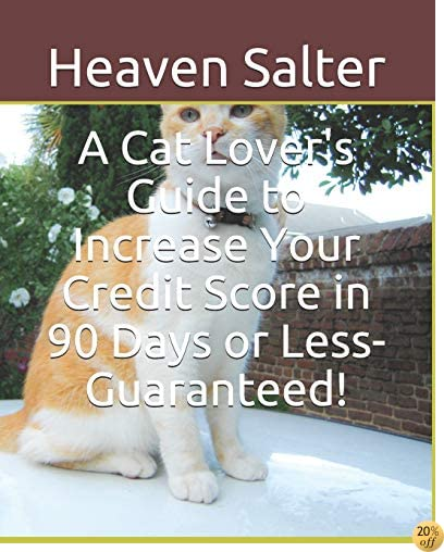 A Cat Lover's Guide to Increase Your Credit Score in 90 Days or Less- Guaranteed!