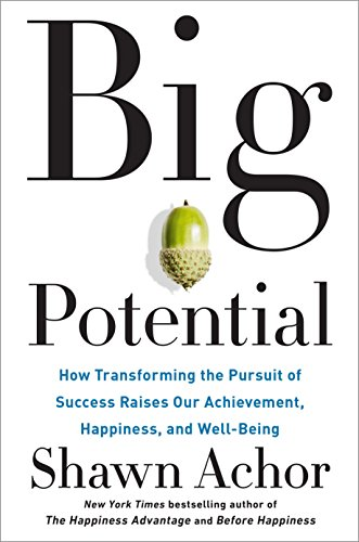 big-potential-how-transforming-the-pursuit-of-success-raises-our-achievement-happiness-and-well-being